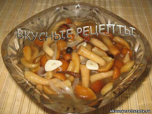 Вкусные маринованные опята рецепт на зиму с
