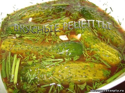 Слоеный салат с курицей и соленым огурцом рецепт с фото